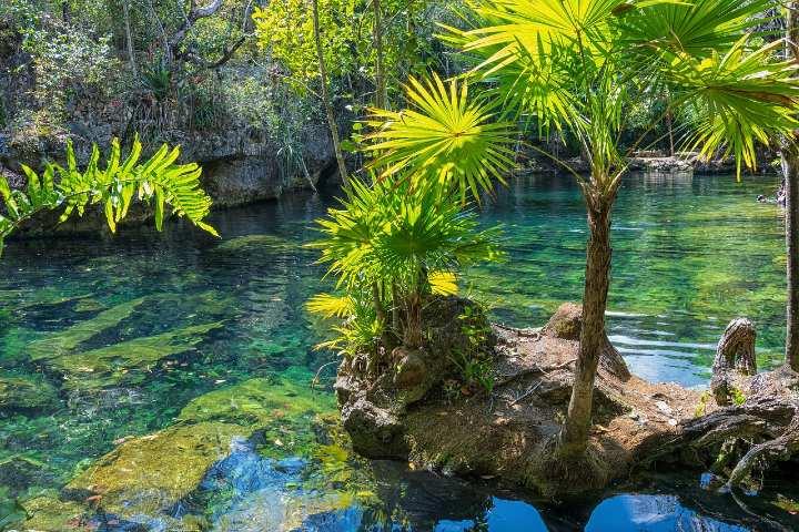 Que hacer en Valladolid Yucatán, Cenote. Foto Emilian Danaila