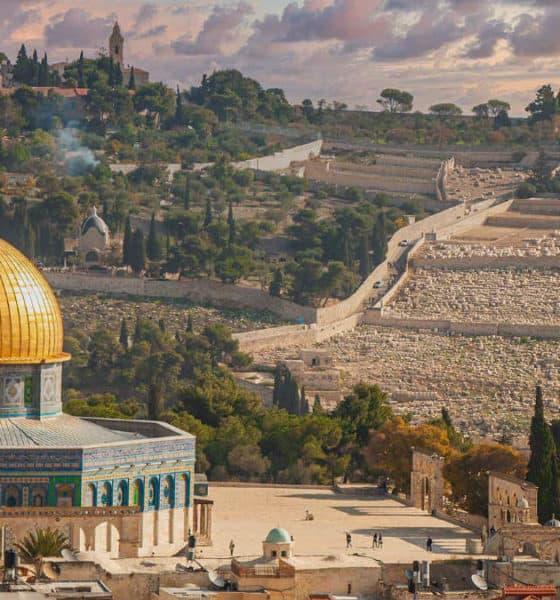 Israel. Imagen: Israel. Archivo