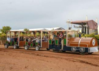 Tierra Adentro Zacatecas viñedos