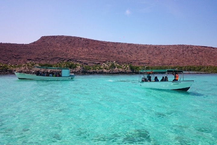 Podcast Isla Espiritu santo en la Paz. Foto: Alonso Tours