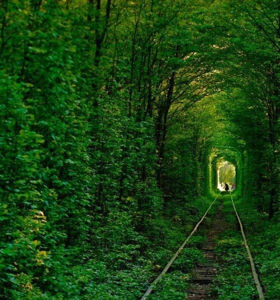 Túnel del amor. Foto: ciudadesconencanto.com