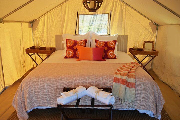 Acampar con glamour _Te encantará_. Foto Archivo