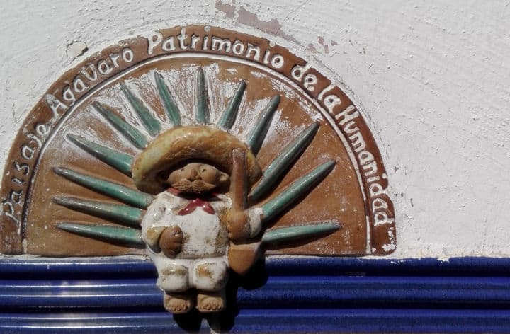 Experiencia en el Pueblo mágico de Tequila. Foto: Archivo