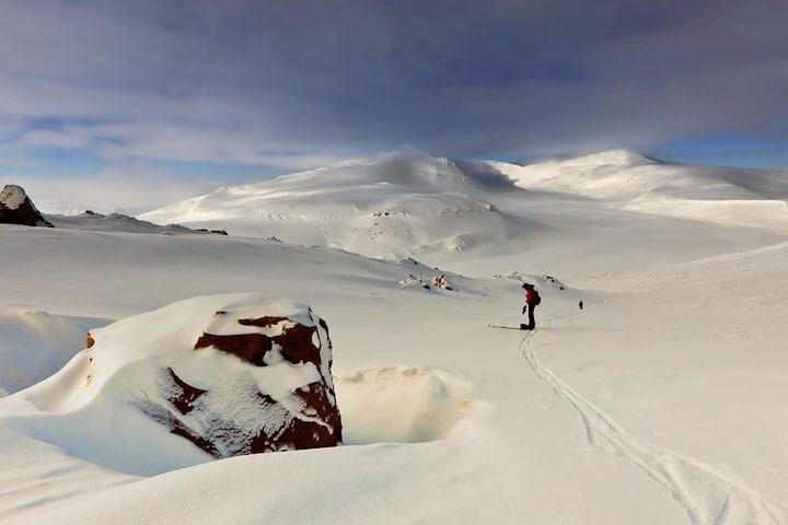 Qué hacer en Svalbard