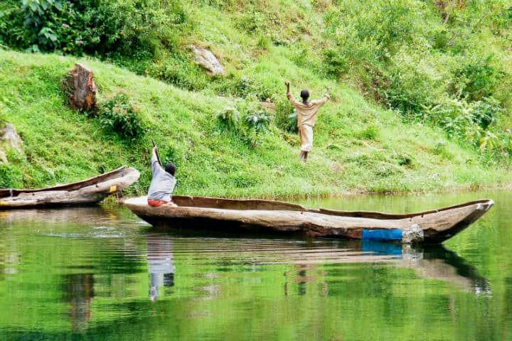 Ruanda Gorilas Foto Dimitri 66 a