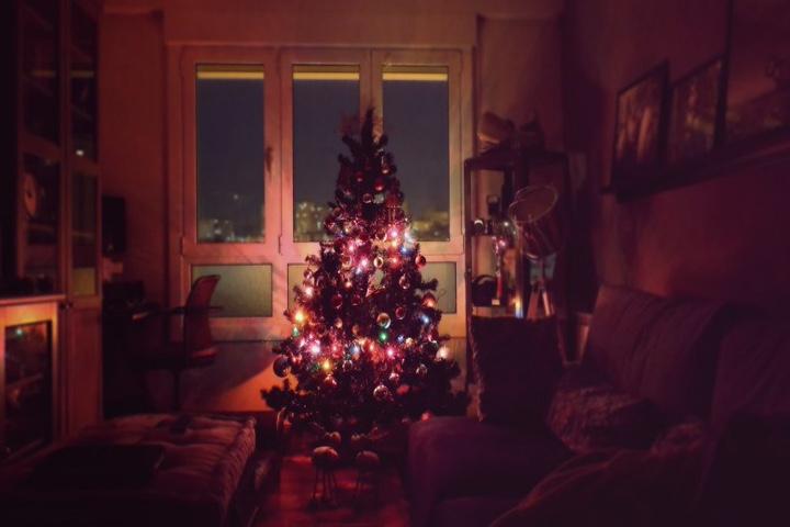 Árbol de navidad. Foto: hunte77