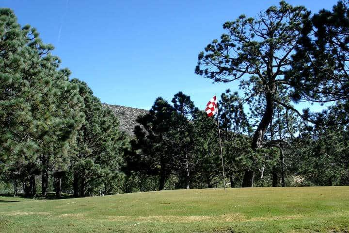 Bosques de Monterreal Foto El Souvenir 64