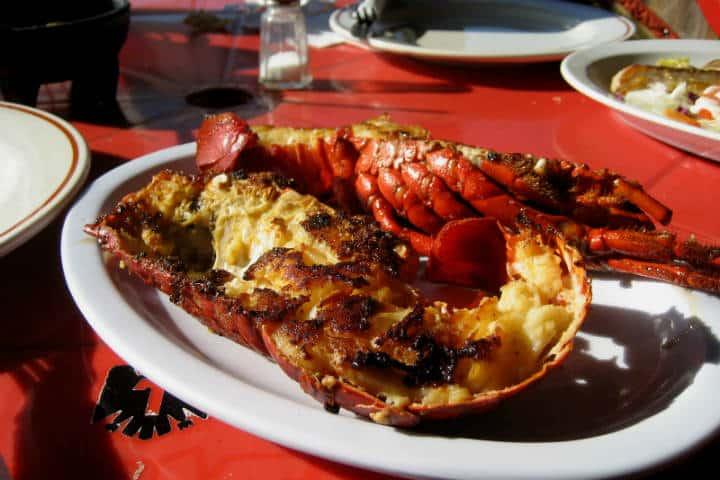 Delicias del Mar Langosta Puerto Nuevo Foto Barnaby Dorfman