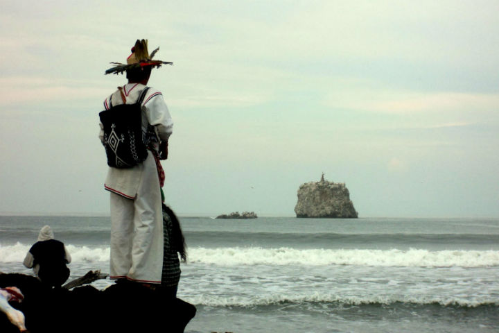 El Rey Nayarit Foto Foto Venado Mestizo