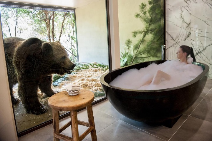 Hotel Zoológico. Foto: ViajerosPiratas