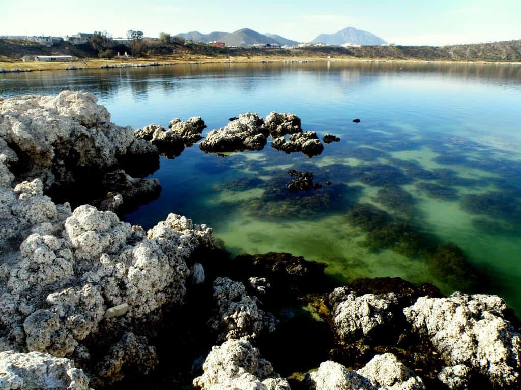 Misterio y belleza en la laguna de Alchichica