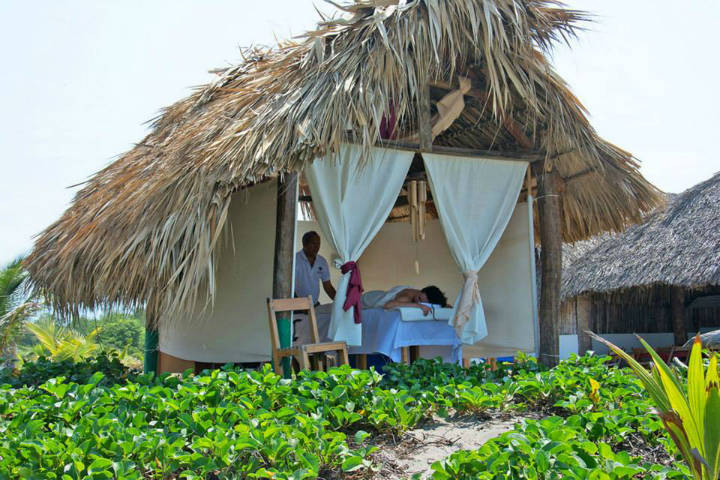 Madresal Chiapas Foto el Souvenir
