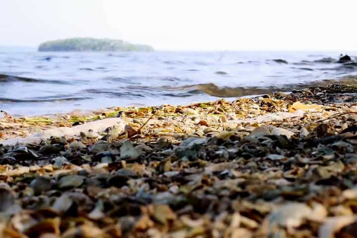 Mandinga Veracruz Mi escape Foto Mariel Galan 13