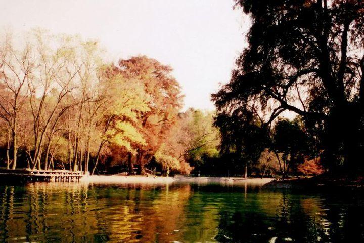 MxCity Foto: Lugares para disfrutar el otoño en CDMX