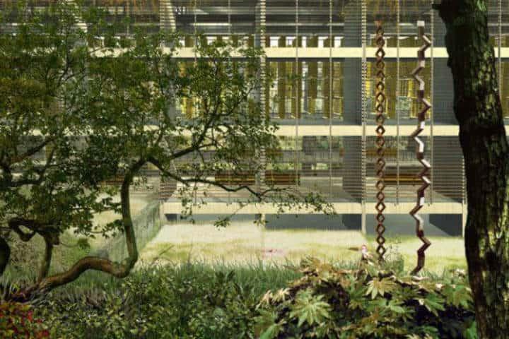 Otoño CDMX Vasconcelos jardin Foto Vasconcelos 1