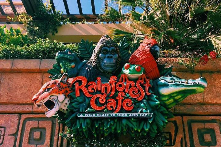 Rainforest Cafe. Foto Dallas Morning News