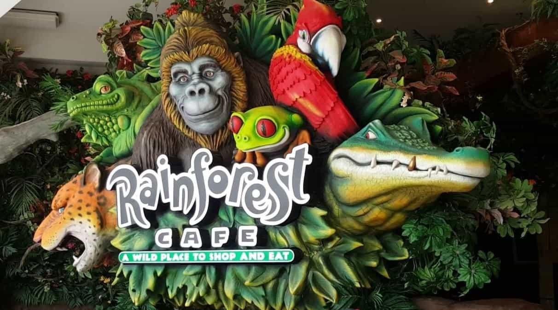 Los restaurantes temáticos: Rainforest Cafe