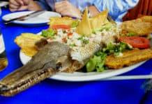 Delicias del mar Pejelagarto Foto El Souvenir 2