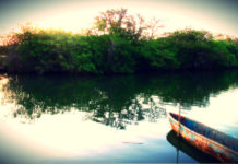 portada Mandinga Veracruz Mi escape Foto Fiveprime