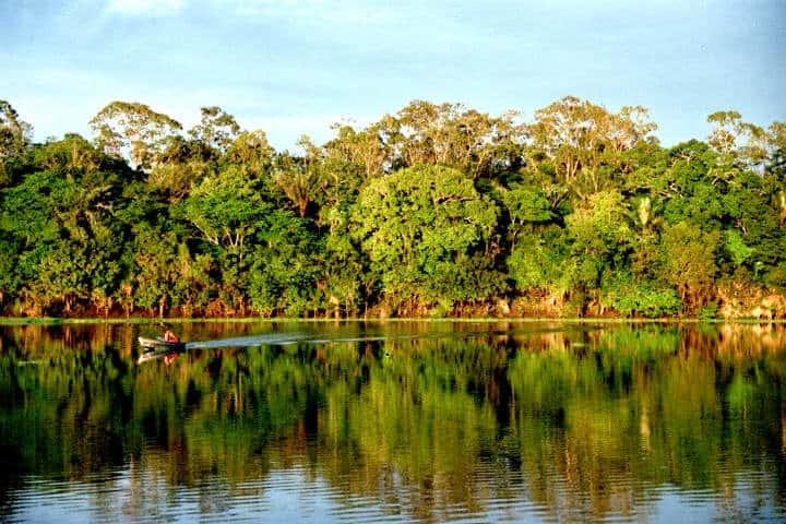 Amazonas Brasil Foto Andre Deak