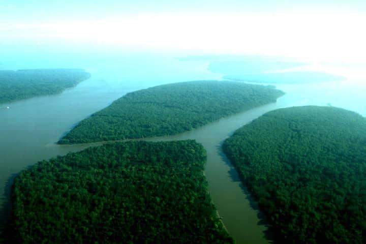 Amazonas Brasil Foto Oboré