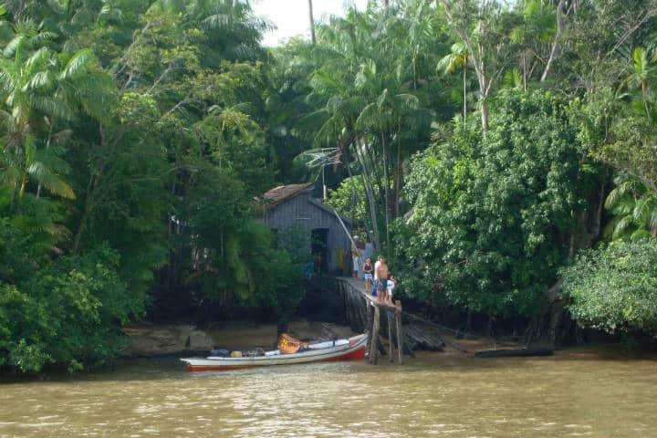 Amazonas Foto Henrique Castro