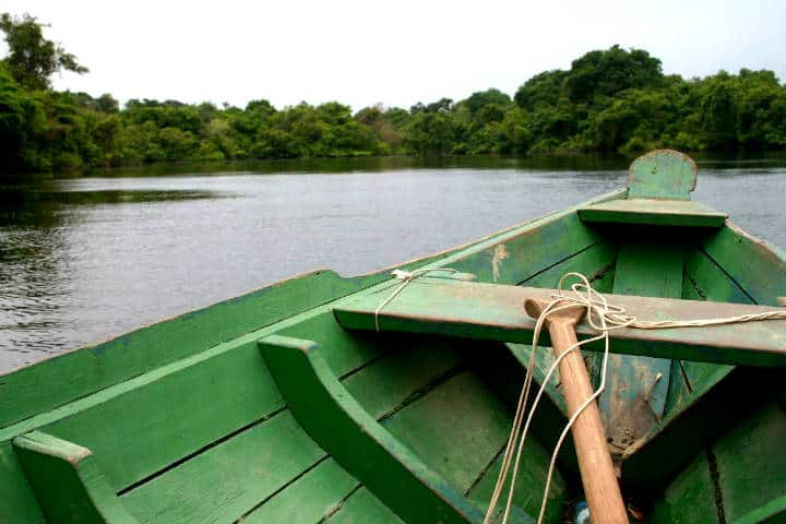Amazonas Foto Luiz Barucke