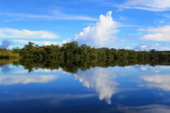 Amazonas Foto Vaqueiro Francis 3