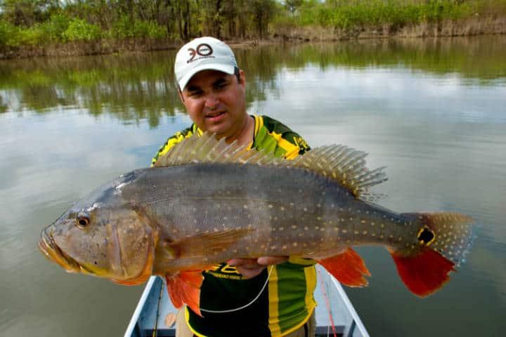 Amazonas Venezuela Foto Alexandre Estanislau 1