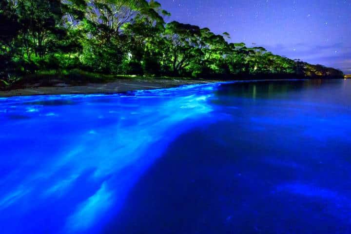 Escapadas Románticas Laguna Bioluminiscencia Foto Archivo
