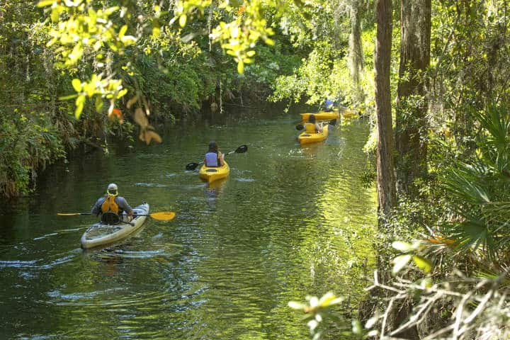 Kissimmee Foto Shingle Creek Regional Park