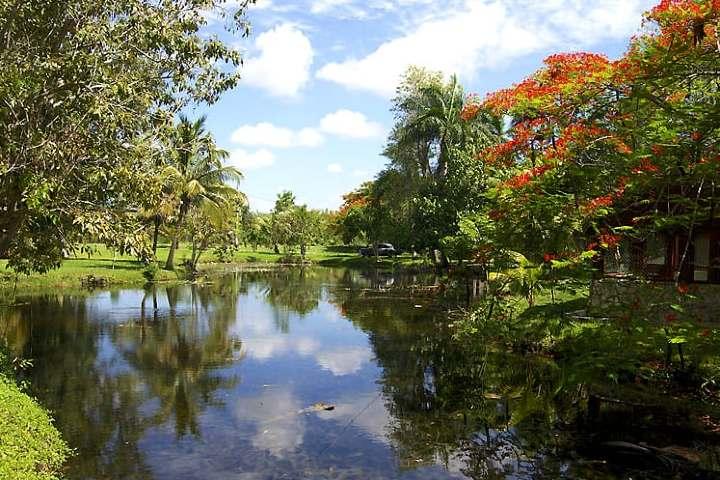 Parque Nacional Ciénaga en Cuba. Foto Archivo.