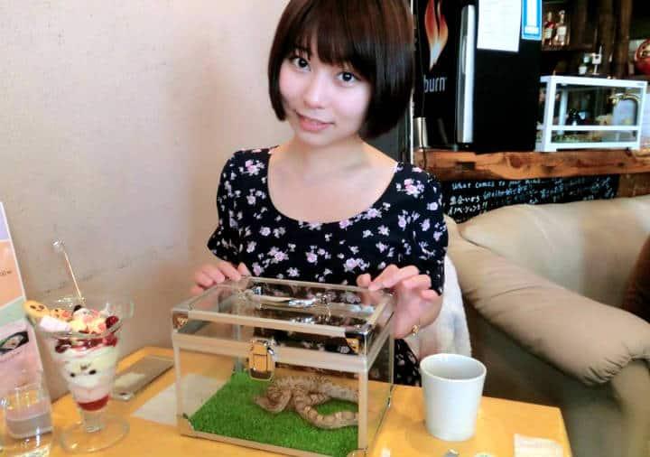 Tokyo Snake Central Foto Cafe & Snake 9