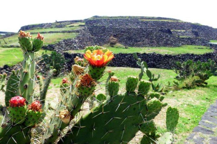 Visita la zona arqueológica de Cuicuilco. Foto Dónde ir.