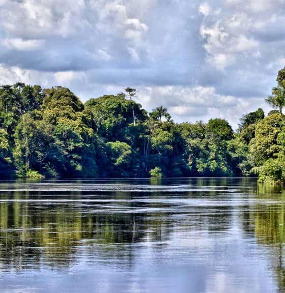 Amazonas Foto Marco Mello
