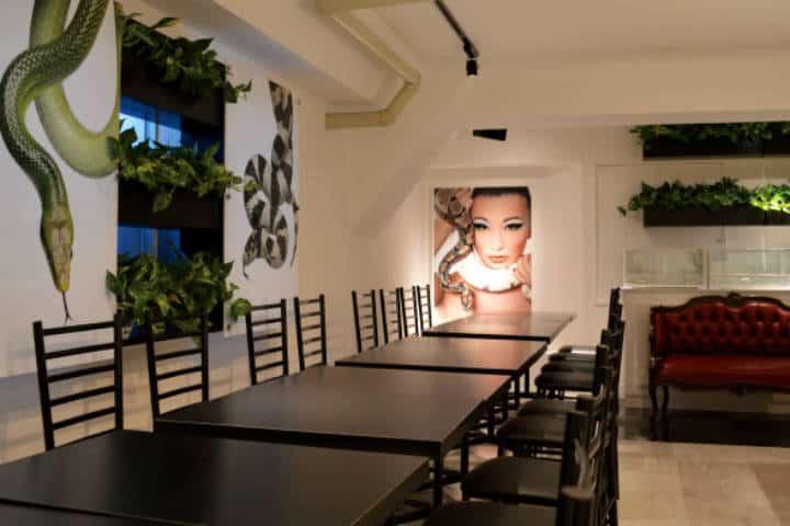 Restaurante para acariciar Serpientes Foto Cafe & Snake