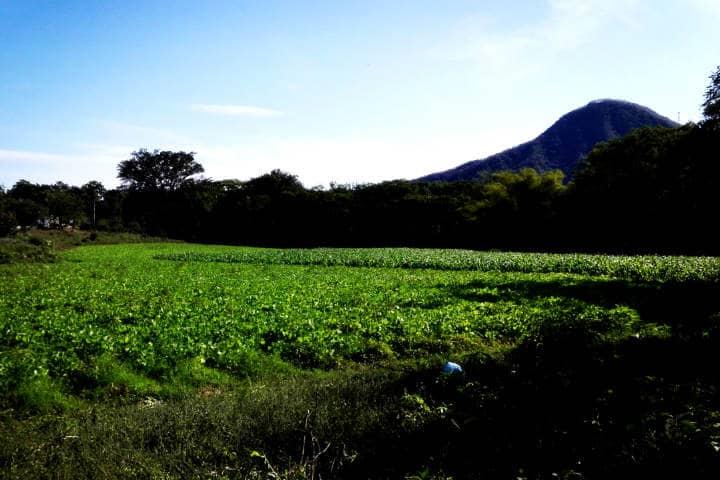 Cosalá Sinaloa Foto Luis Juarez 8
