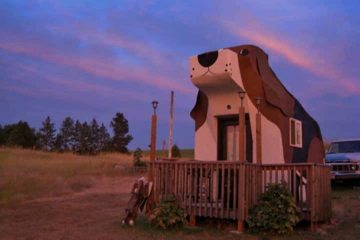 Hoteles curiosos dogbarkpark