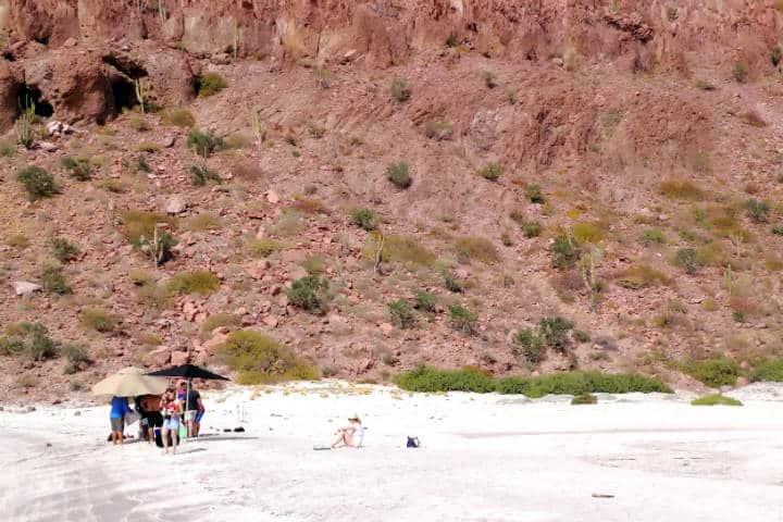 Nado con Lobos Marinos Foto El Souvenir 27