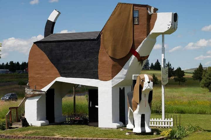 hoteles curiosos Dog Bark Park Foto Archivo
