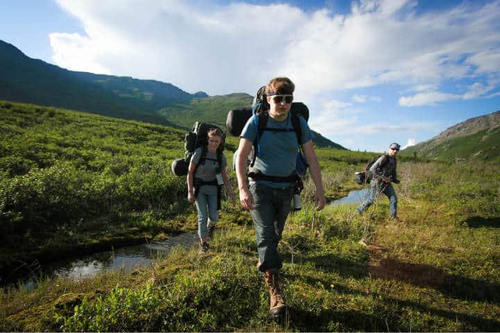 seguro de viaje Foto Denali National Park