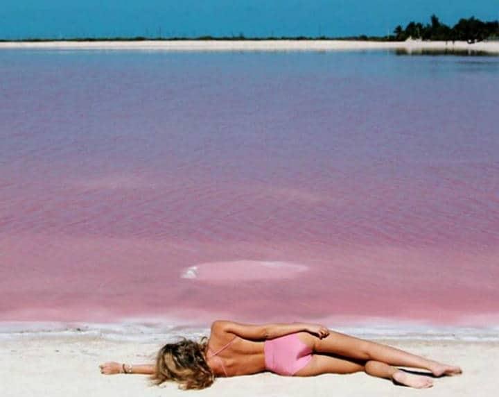Las Coloradas Yucatán Foto Yucatán Turismo