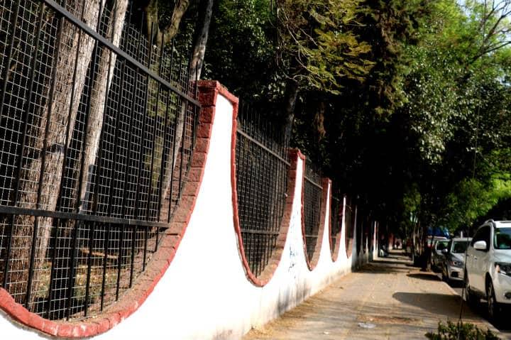 Viveros Coyoacán Foto Fidel Enríquez 9