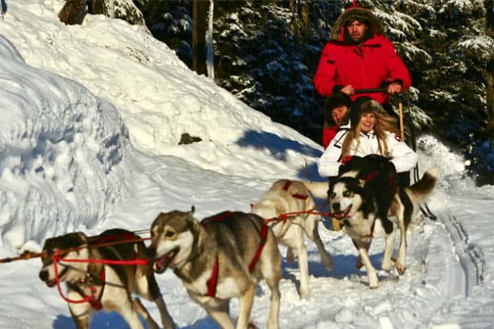 Cosas qué hacer en Whistler Foto Canadian Wilderness