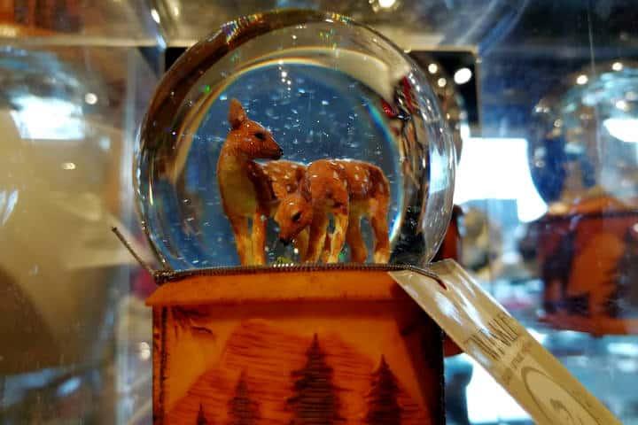 Cosas que hacer en Whistler Foto El Souvenir 33