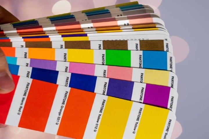 Artista usa Paleta de colores en Italia