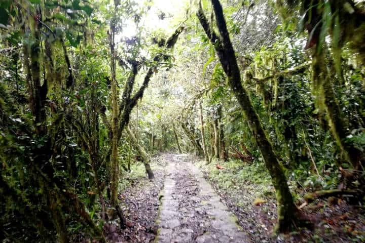 Perú Cascada Gocta Foto El Souvenir 13