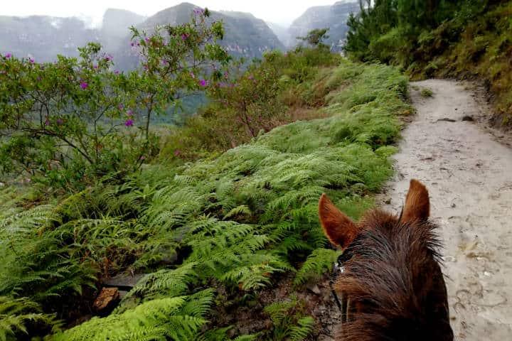 Perú Cascada Gocta Foto El Souvenir 18