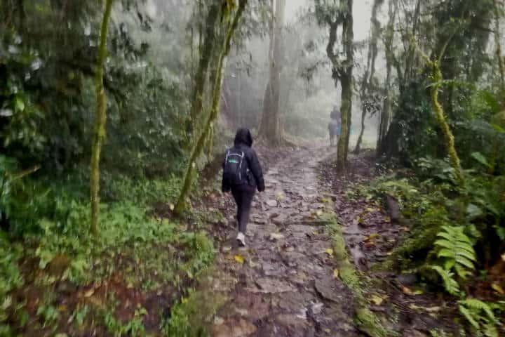 Perú Cascada Gocta Foto El Souvenir 9