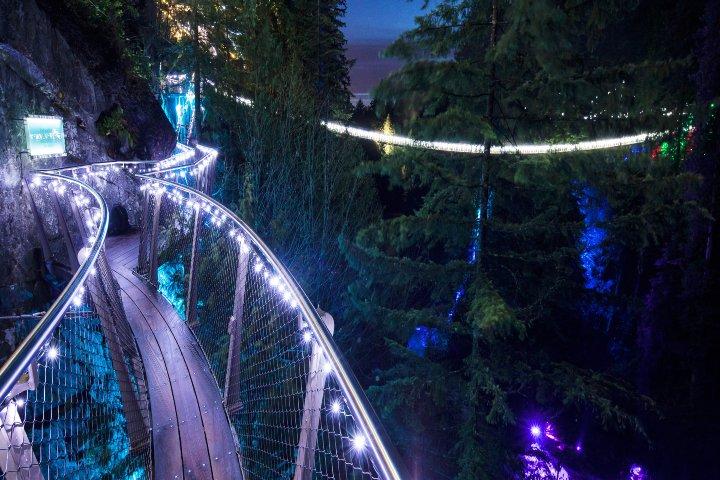 Puente Capilano -El universal